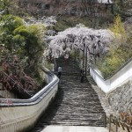 Stairs at Hasedera Temple